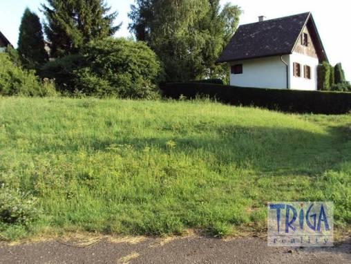 Velký Vřešťov - pozemek na chatu foto 1