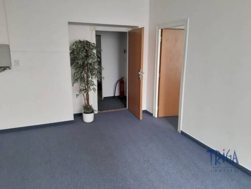Commercial space for rent, Offices, 260 m² foto 1