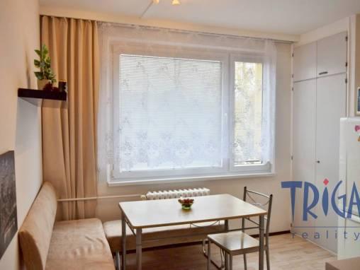 Hradec Králové - prostorný byt 2+kk ve zvýšeném přízemí foto 1