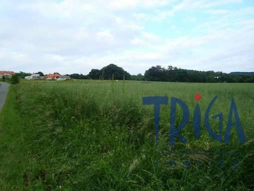 Provodov - zemědělský pozemek foto 1