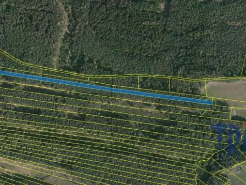 Černýšovice - lesní pozemek foto 1