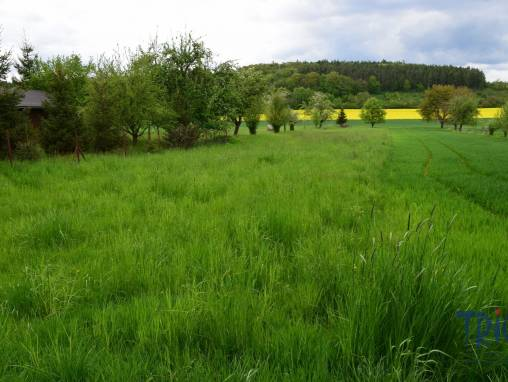 Velichovky - prodej pozemku 1525  m² - zahrada foto 1
