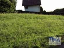 Velký Vřešťov - pozemek na chatu foto 3