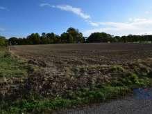 Slavoňov - pozemek 12406 m² s územní studií pro stavbu 10 domů foto 3