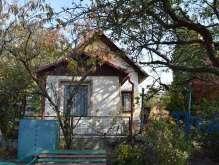 Dvůr Králové n. L. - rekreační domek se zahradou foto 2