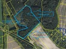 Hustířany - prodej lesa 16 465 m² foto 2