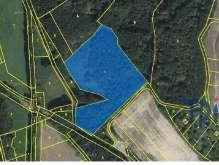Hustířany - prodej lesa 16 465 m² foto 3