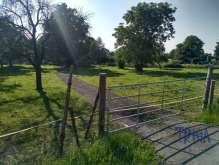 Brzice - Proruby - stavební pozemek 1170 m² foto 2