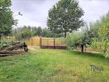 Hořice - pěkná zahrada foto 2