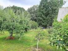 Hořice - pěkná zahrada foto 3
