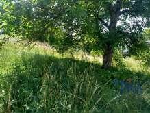 Land for sale, 3311 m² foto 3