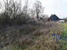 Lužany - stavební pozemek 3005  m² foto 2