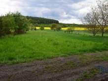 Velichovky - prodej pozemku 1525  m² - zahrada foto 2