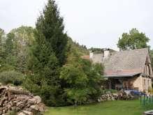Nízká Srbská - prodej domu 3+kk s pozemkem 1410  m² foto 2