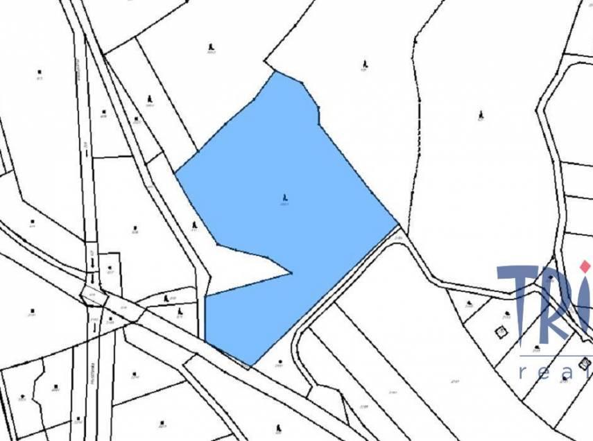 Hustířany - prodej lesa 16 465 m²
