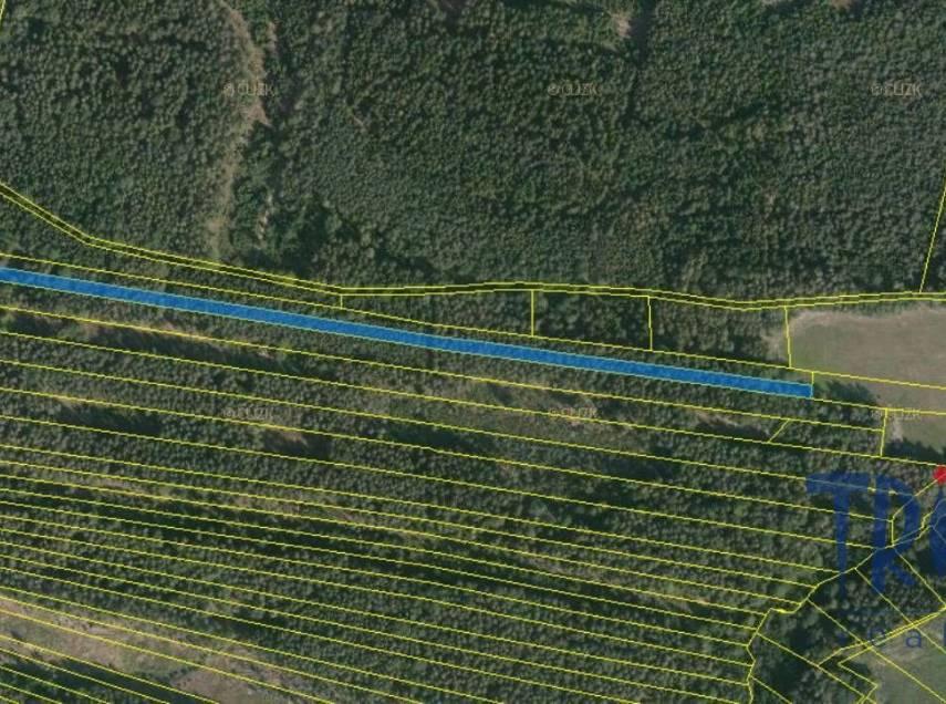 Černýšovice - lesní pozemek