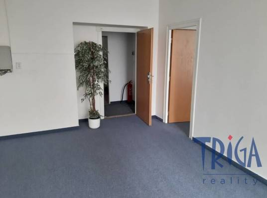 Commercial space for rent, Offices, 260 m²